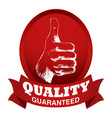 thumb up sketch with quality guaranteed text vector image vector image