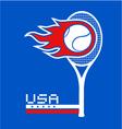 USA team tennis vector image vector image