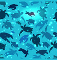 world turtle day 23 may background turtle swims vector image vector image