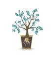 ypung money tree isolated object on white vector image vector image