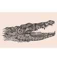 Zentangle stylized crocodile head vector image vector image