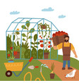 a young man with a crop tomato greenhouse vector image