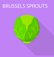 brussels sprouts icon flat style vector image vector image