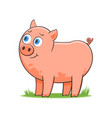 happy cartoon pig vector image vector image