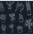 seamless pattern plants in a pot Hand drawn doodle vector image vector image