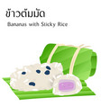 thai food banana with sticky rice vector image vector image