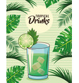 tropical cocktail drink poster vector image