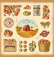 Vintage colorful apple harvest set vector image vector image