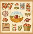 vintage colorful apple harvest set vector image vector image