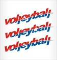 volleyball logo word text vector image