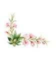watercolor wreath pink flowers and vector image