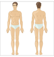 White man in underwear vector image vector image
