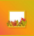 autumn leaves pumpkin square frame vector image