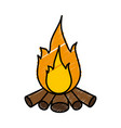 bonfire icon image vector image