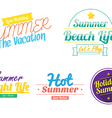 color summer hipster vintage logo icon vector image vector image