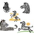 five funny zebra set vector image vector image