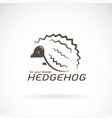hedgehog design on white background wild animals vector image vector image
