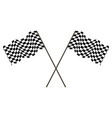 racing flag of the winner developing in the wind vector image vector image