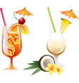 set beach tropical cocktails bahama mama and vector image