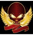 skull shield vector image vector image