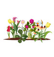 spring flower bed garden blossom flowers vector image