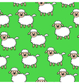 white lamb pattern green vector image
