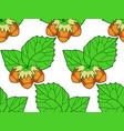 hazel leaf and nuts pattern vector image vector image