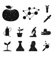 isolated object of genetic and plant sign set of vector image vector image