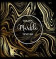 marble gold and black texture vector image