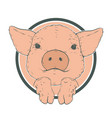 sketch pig piglet face drawn in a circle vector image vector image