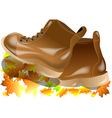 walking boots vector image vector image