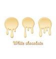 white chocolate drip splash set chocolate liquid vector image