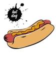 hotdog with mustard vector image