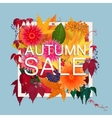 Autumn sale discount banner Modern style Poster vector image vector image