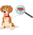 flea infested dog vector image vector image