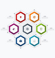 infographics template 6 options with hexagon vector image