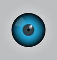 eye ball vector image vector image