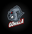 gorilla head from side can be used for club vector image