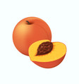peach fruit realistic ripe whole and half vector image vector image