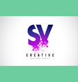 sv s v purple letter logo design with liquid vector image vector image