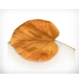 Dry leaf icon vector image vector image