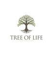 tree life oak banyan leaf and root seal emblem vector image