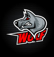 wolf head from side can be used for club or team vector image