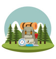 camping zone with equipment vector image vector image