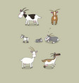 cute cartoon goat farm animals different breeds vector image vector image