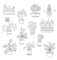 cute hand drawn flowers in pots vector image vector image