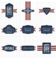 fourth july patriotic labels set vector image