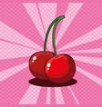 fresh cherries fruits icon vector image