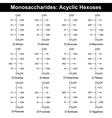 Main monosaccharides - hexoses vector image vector image