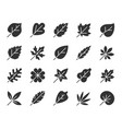 organic leaf black silhouette icons set vector image